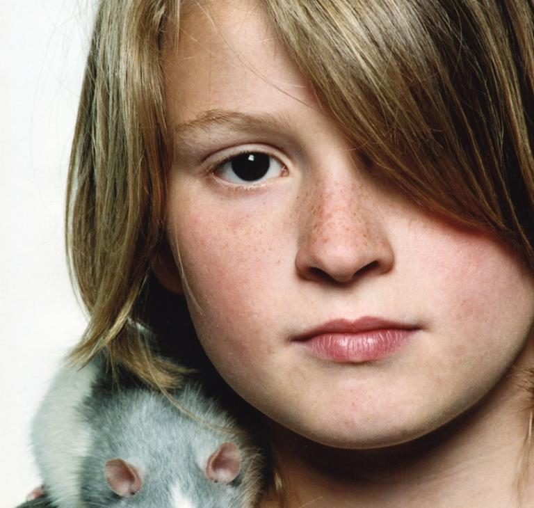 Huisdier – rat